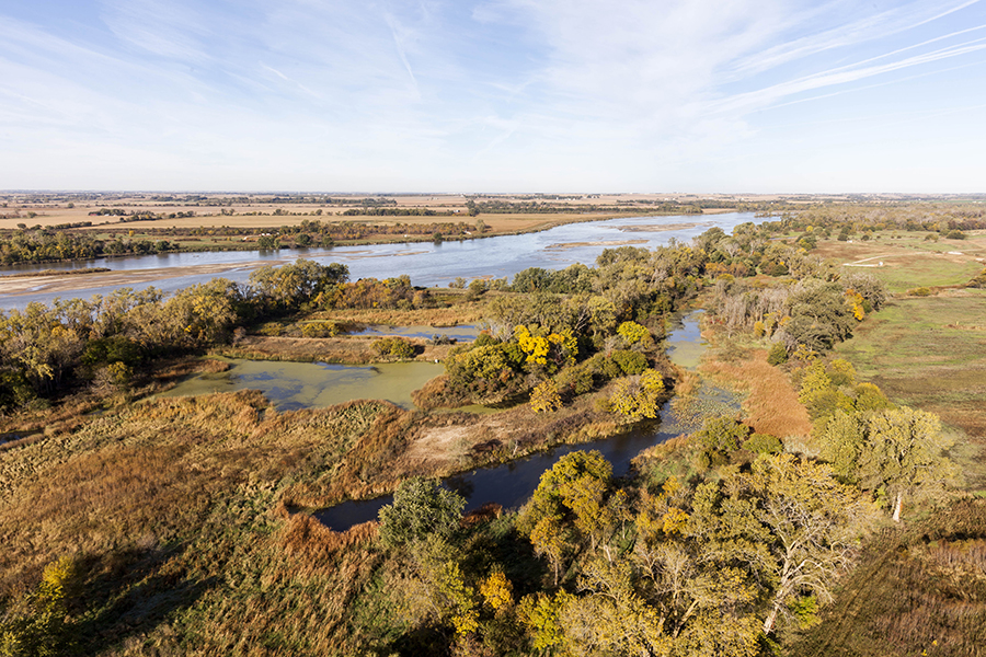 aerial picture of wetlands